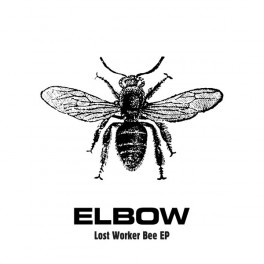 Lost Worker Bee (EP)